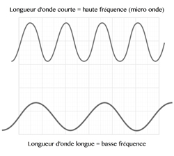 Info general diagram micro-ondes